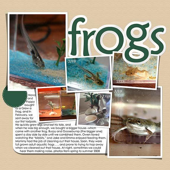 Frogs web